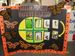 Interactive Bulletin Boards 006