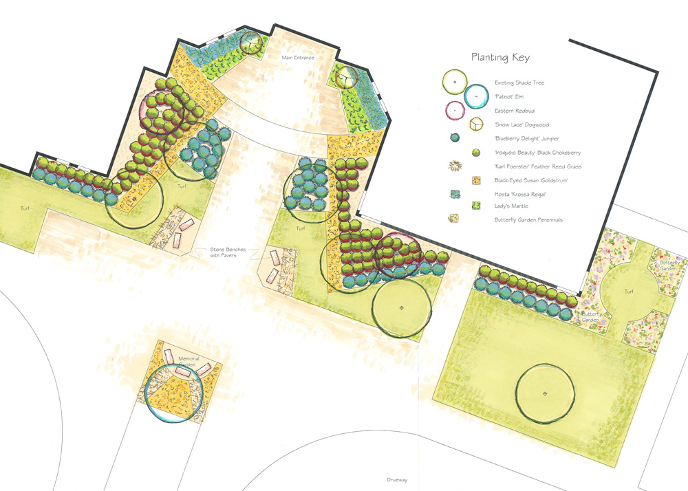 Shannon Park Elementary School Sustainable Garden Plan—Planting Key