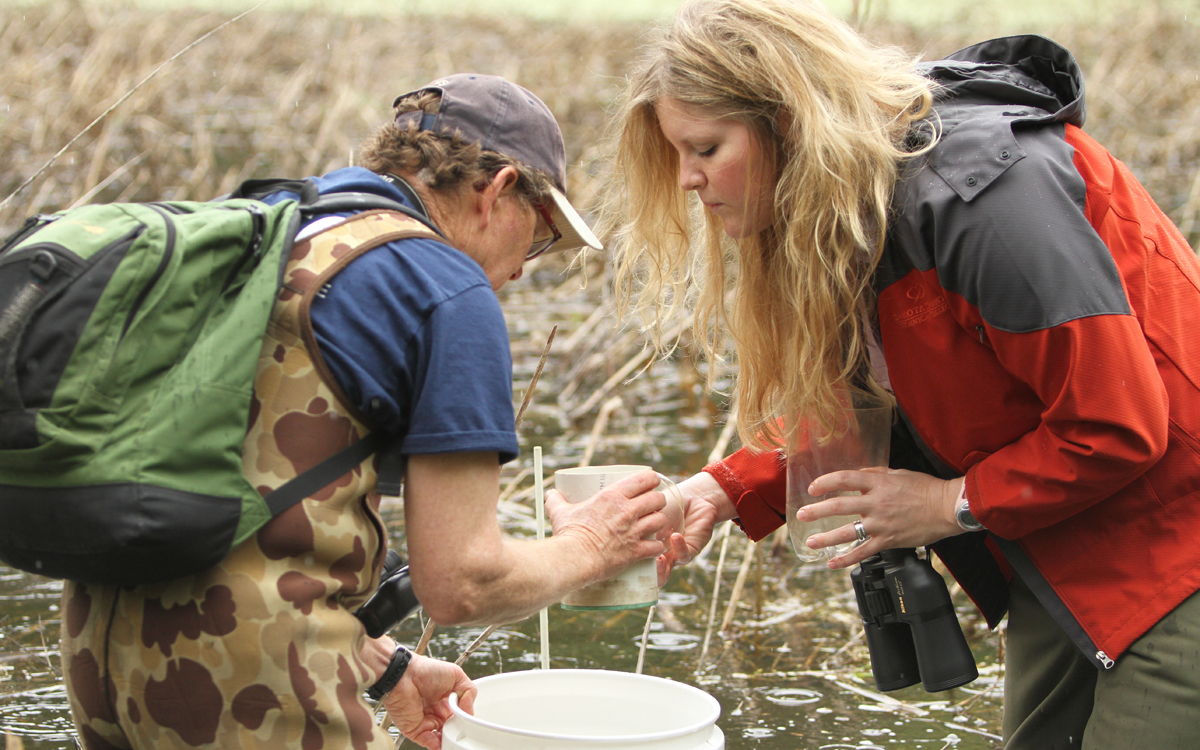 Dan Stinnett and Erin Edlund collecting invertebrate samples