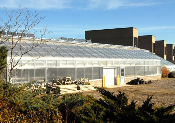 Greenhouse with roof-mounted solar panels on DCTC Rosemount campus