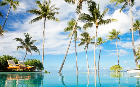 Spa and resort management program