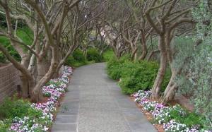 Dallas Arboretum and Botanical Garden   Dallas, Texas