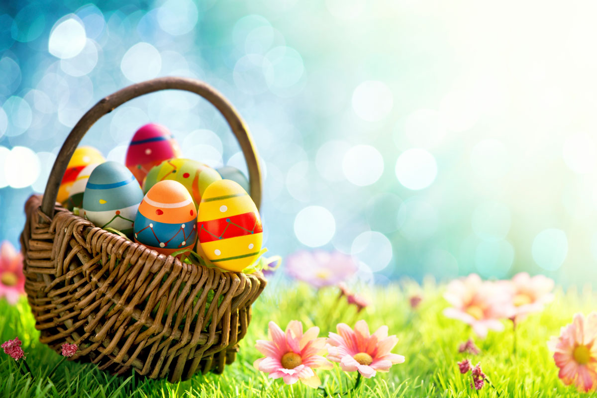 Annual egg hunt returns to dctc dctc news