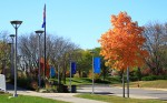 DCTC fall campus