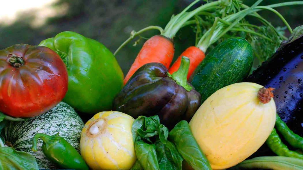 Teaching Sustainable Food Systems