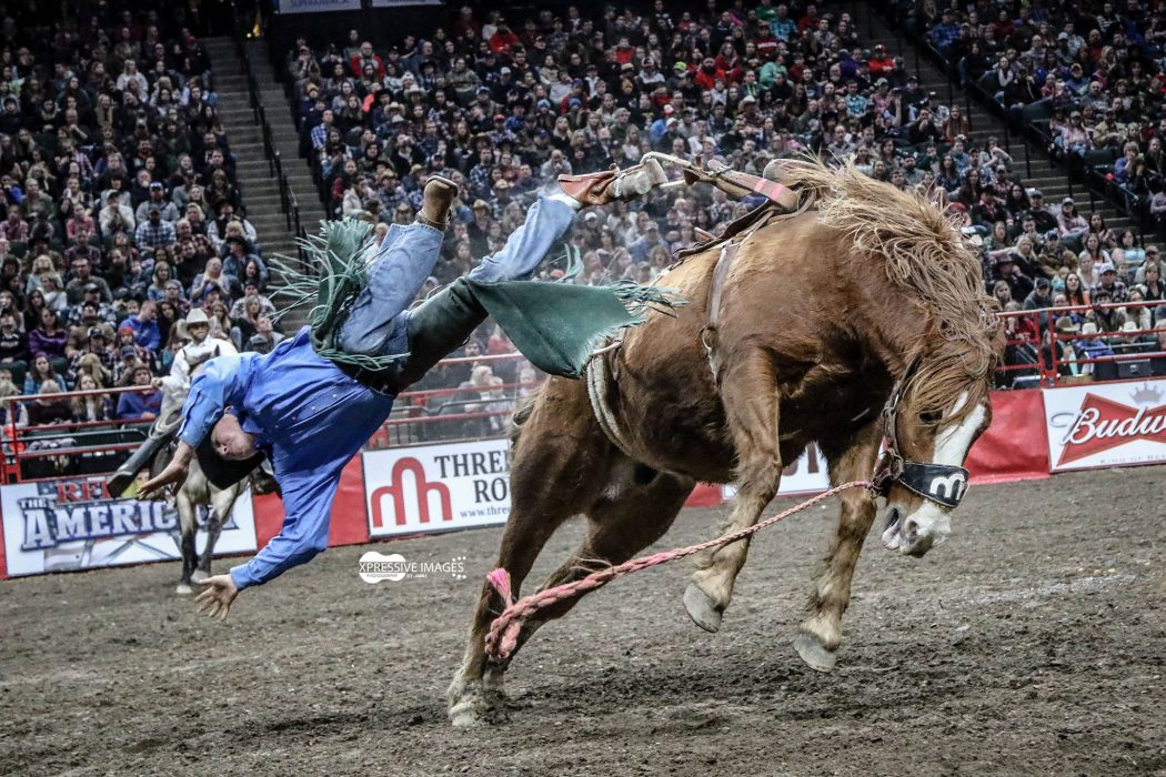 World's Toughest Rodeo 2017