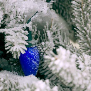 Frosty Christmas Lights
