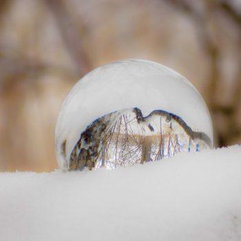 A Winter's Ball