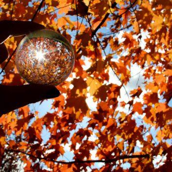 Fall Lensball