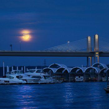 Illuminating the Harbor
